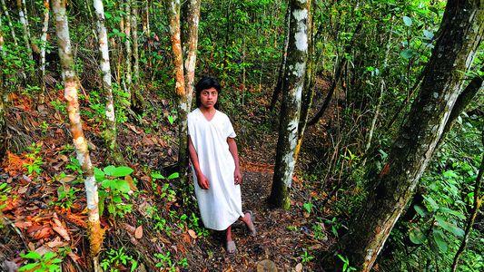 Galerie: Die Weisheit der Maya