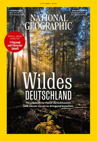 Magazin-Cover von National Geographic Oktober 2021, zu sehen ist ein unberührtes Waldstück.