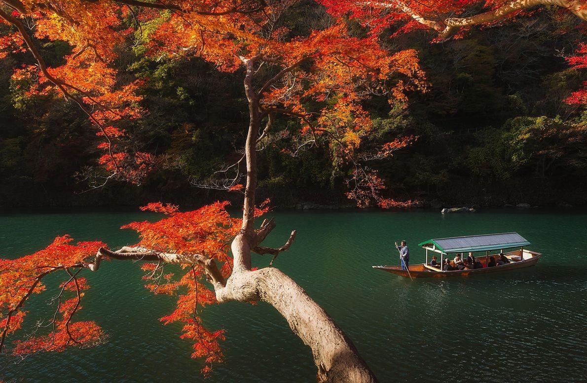 Farbenfrohes Herbstlaub säumt die Ufer des Flusses Katsura in Arashiyama, einem Bezirk am westlichen Rand von ...