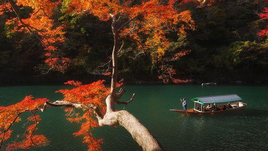 Galerie: Entdeckt 20 von Kyotos versteckten Schätzen