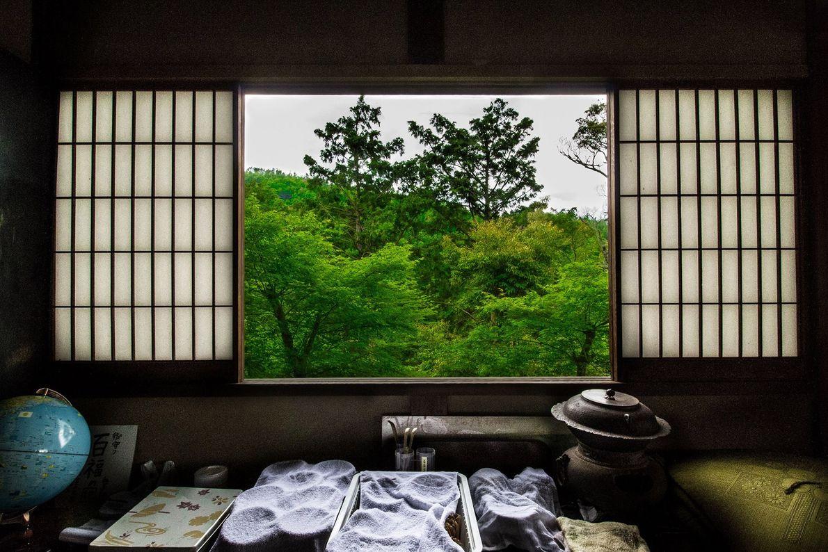 Die Shoji-Fenster eines Machiya, eines traditionellen japanischen Holzhauses, geben den morgendlichen Blick auf den grünen Sagano-Wald ...
