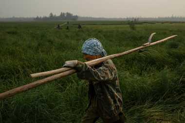Terentiy Ignatyev, 64, arbeitet mit seiner Familie auf dem Feld.