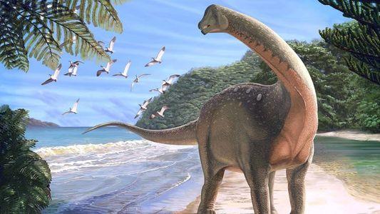 Mal keine Pyramide: Bisher unbekannte Dinosaurierart in Ägypten entdeckt