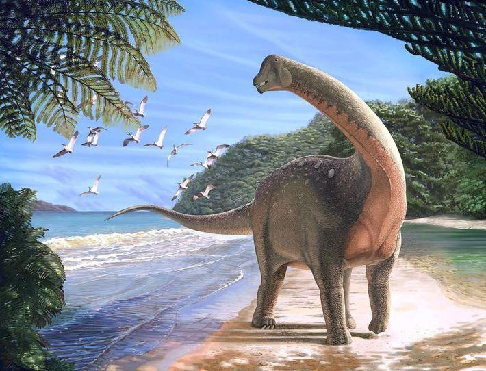 Der Titanosaurier Mansourasaurus shahinae, der an der Küste des heutigen Ägyptens entdeckt wurde, starb in der ...
