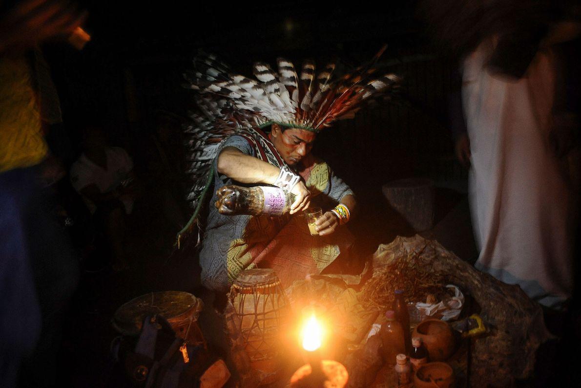 Ein Mitglied des brasilianischen Stammes der Huni Kui bereitet Ayahuasca für ein Heilungsritual zu. Das psychoaktive ...