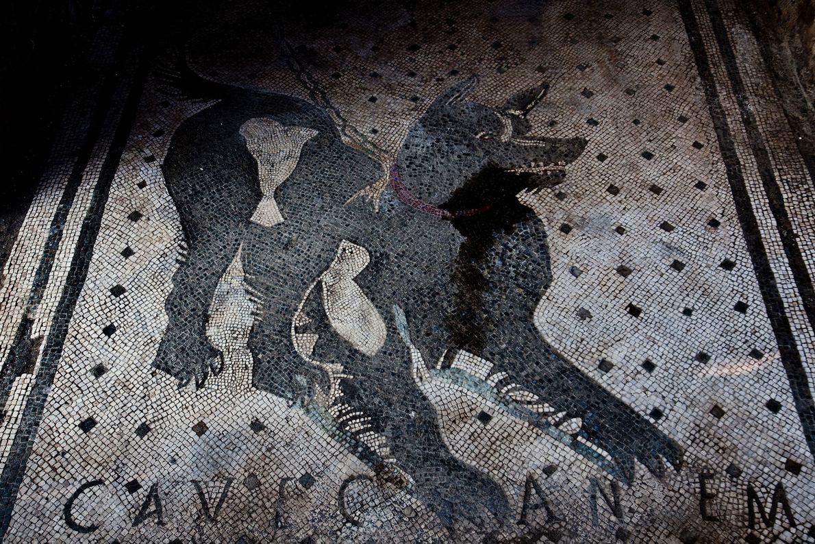 """Dieses bekannte Mosaik an einem Hauseingang in Pompeji trägt den Schriftzug """"Cave Canem"""", lateinisch für """"Warnung ..."""