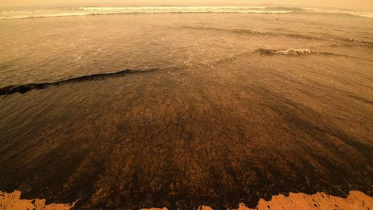 Australiens Buschfeuer gefährden das Trinkwasser