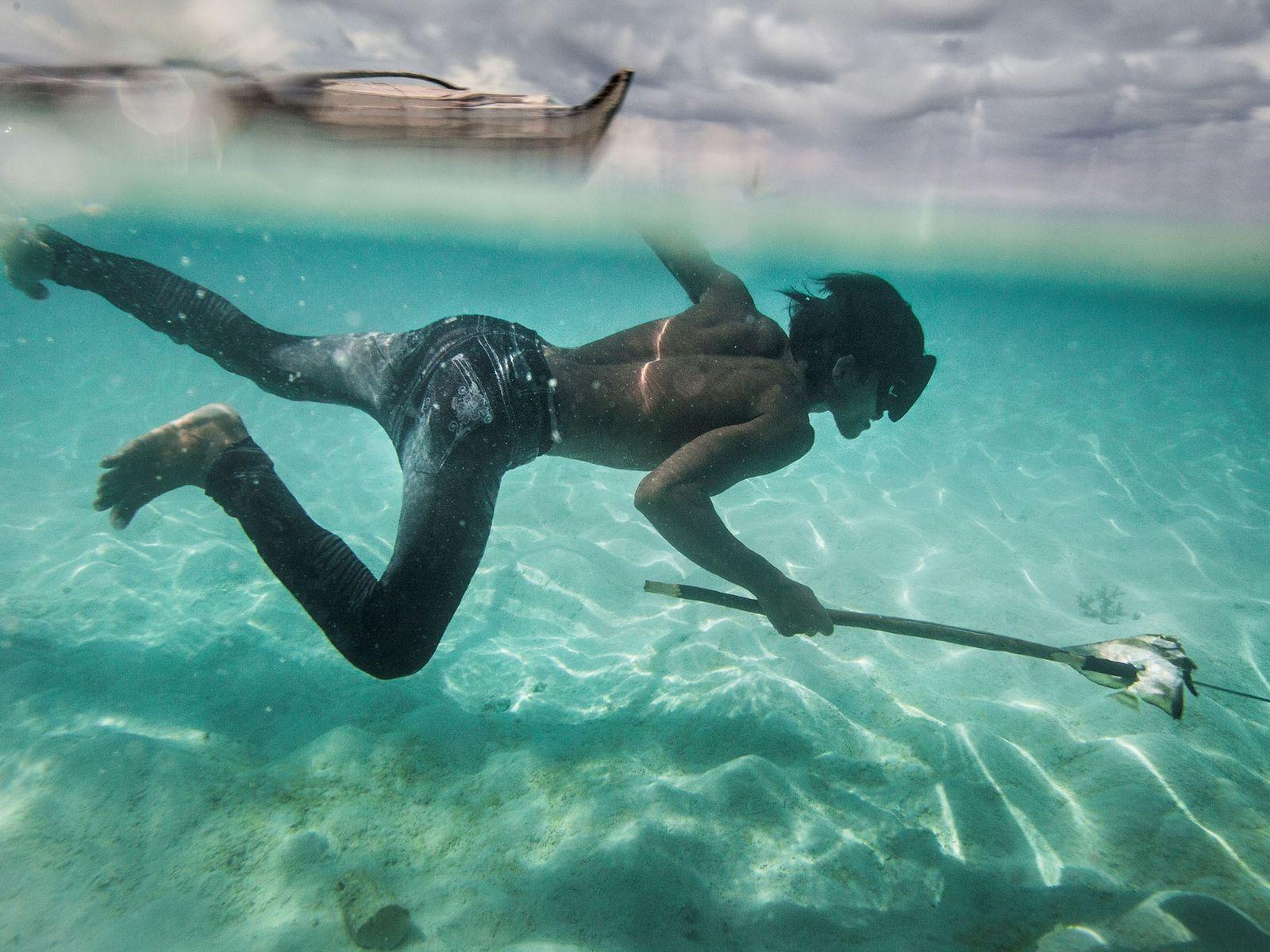 Ein junger Bajau namens Dido taucht vor der Insel Mantabuan nach Fischen und Muscheln.