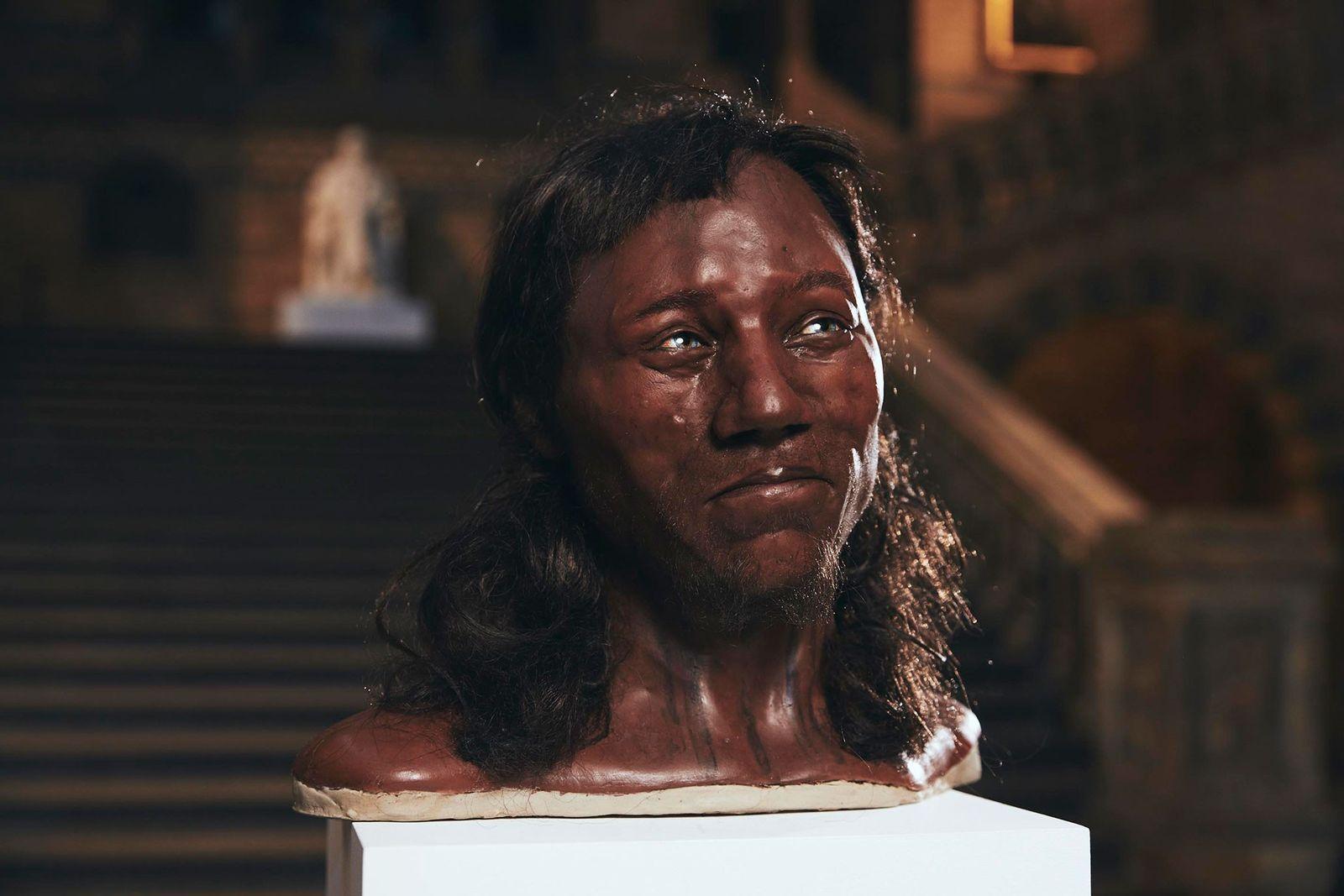 Durch eine Sequenzierung der DNA konnten Forscher auf die Augenfarbe, die Hautfarbe und den Haartyp schließen. ...