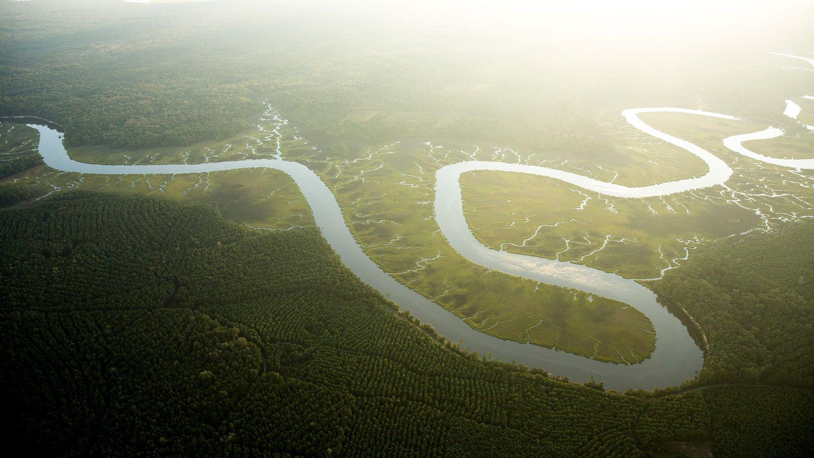 Die Auswirkungen von erhöhtem CO2-Niveau und steigenden Temperaturen sorgt für einen erhöhten Wasserbedarf der Vegetation. Das ...