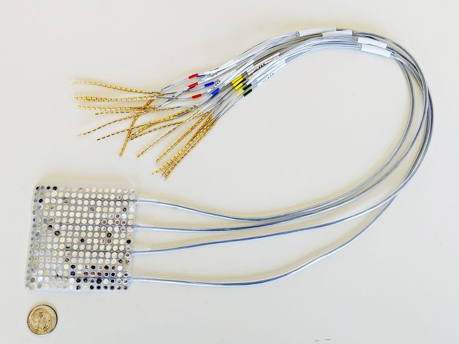 Dieses Elektrodengitter von der Größe einer Briefmarke wird direkt auf dem Gehirn der Patienten platziert und ...