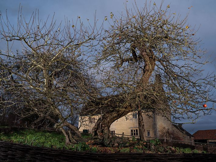 Isaac Newtons Haus