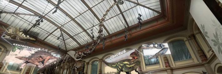 Urzeitgiganten im Museum