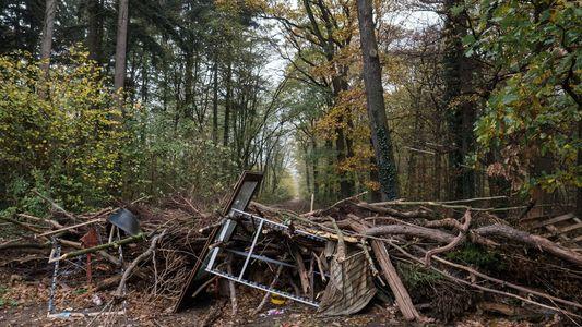 Besetzt und umkämpft: Der langsame Tod des Hambacher Forsts