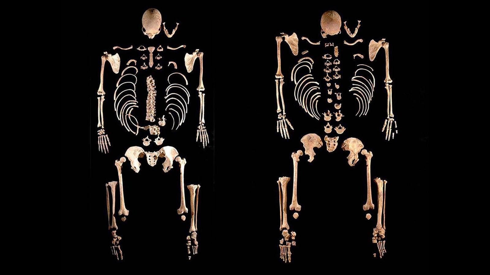 Diese Skelette alter Jäger und Sammler – die zufällig Brüder sind – halfen Forschern dabei, die ...