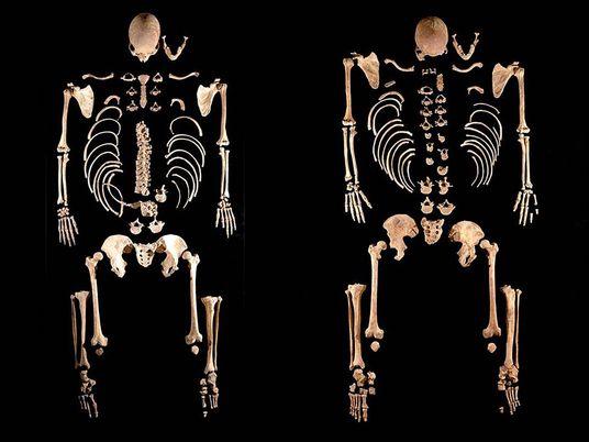 Überraschende DNA-Funde in alten Skeletten aus Südeuropa
