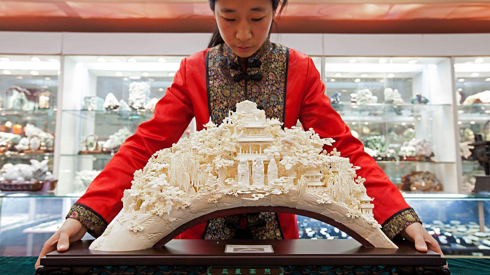 Nach Jahren der Förderung des Elfenbeinhandels als Teil seiner kulturellen Tradition, schließt die chinesische Regierung nun ...