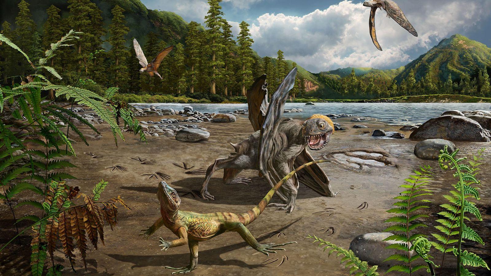 Vor etwa 110 Millionen Jahren gab es in Südkorea üppige Lagunen, in denen sich Eidechsen und ...