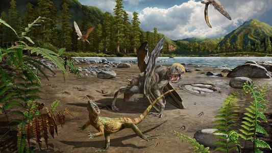 Fossile Spuren sind ältester Beleg für zweibeinigen Eidechsensprint