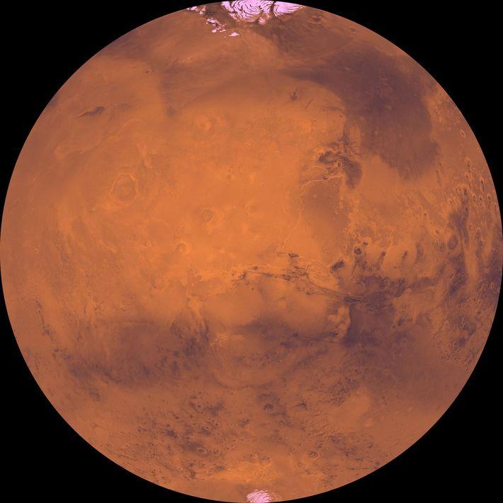 Die dunklen Becken und hellen Polkappen zählen zu den markantesten Merkmalen des Mars.