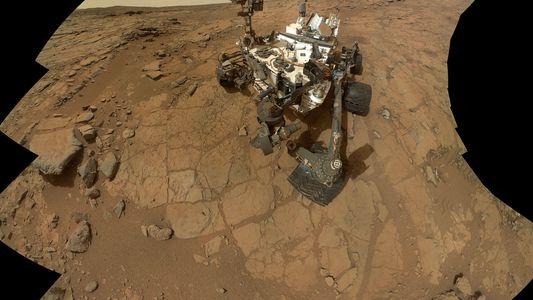 Galerie: Elon Musk: In 7 Jahren könnten Menschen auf dem Mars landen