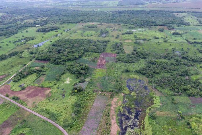 Luftaufnahme von Aguada Fénix