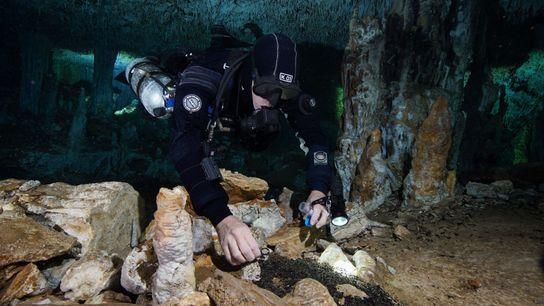 Ein Taucher untersucht Steine, die vor 10.000 bis 12.000 Jahren in einer Höhle auf Yucatán zu ...