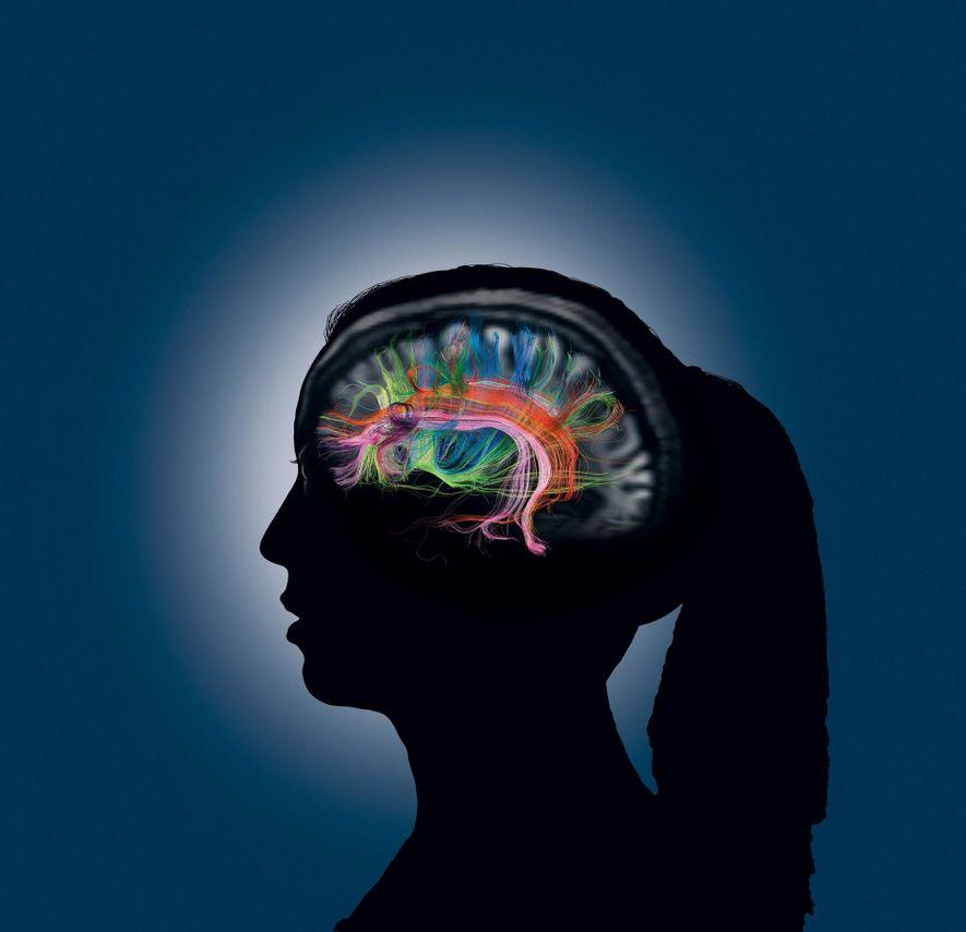 Wenn wir auf unser Gedächtnis zugreifen, kommunizieren verschiedene Teile des Gehirns miteinander, die hier durch die …