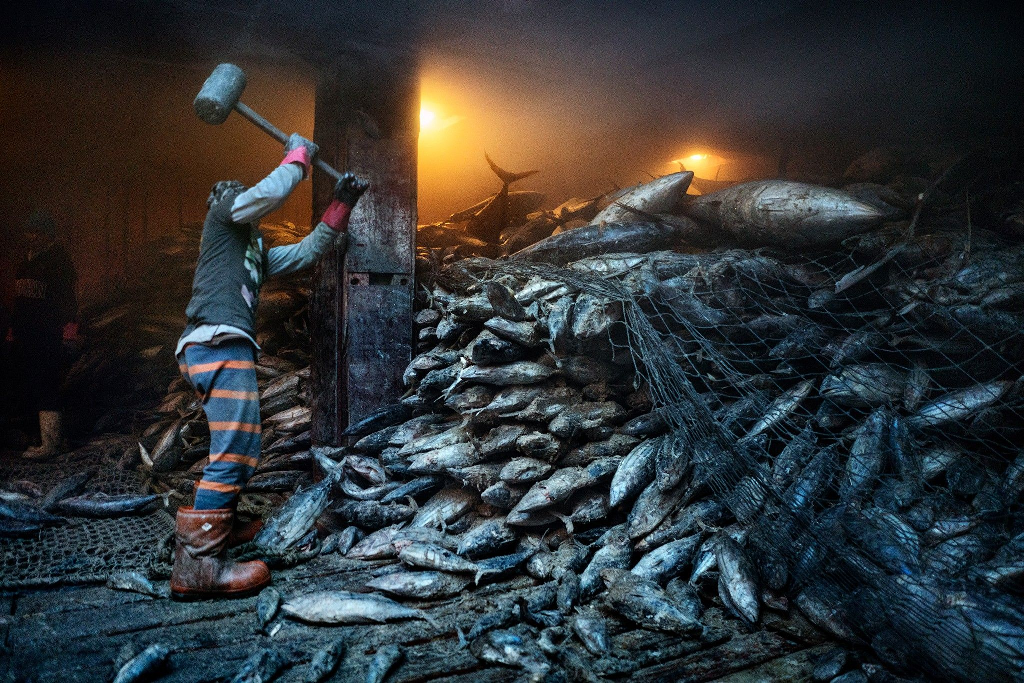 Dem Meer gehen die Fische aus | National Geographic