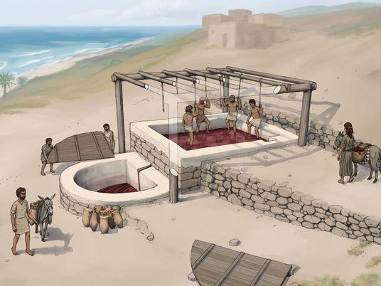 2.600 Jahre alte Weinpresse der Phönizier: Die Anfänge der Weinkultur