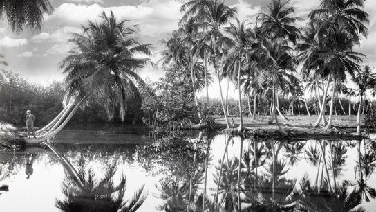 In der Gemeinde Villalba füllt ein Wasserfall einen kleinen See. Die abwechslungsreiche Landschaft der Insel umfasst ...