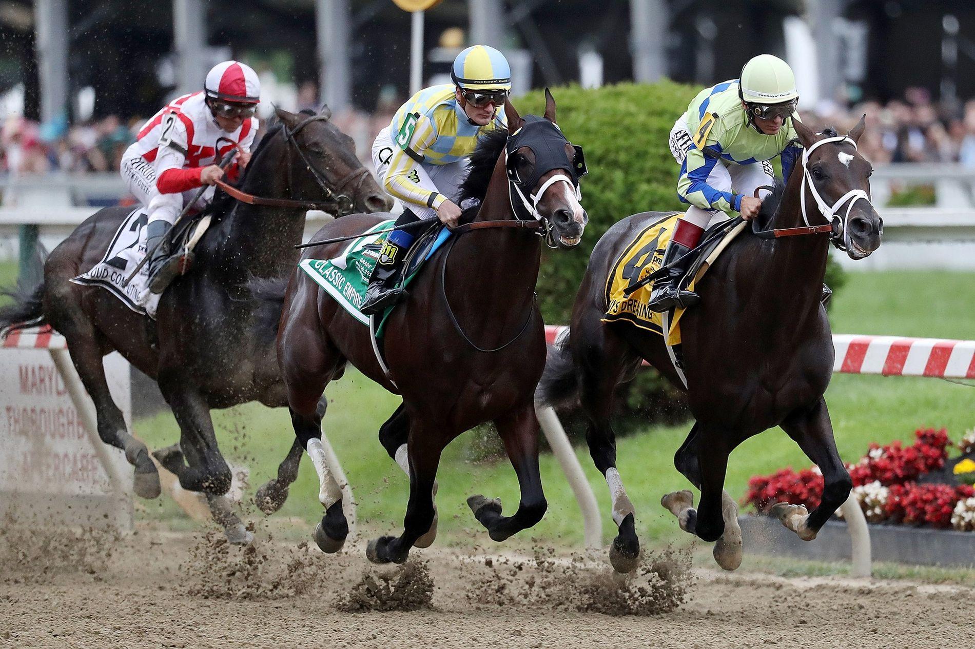 Rennpferde wie die hier abgebildeten, die 2017 beim Rennen Preakness Stakes in Baltimore (Maryland, USA) abgelichtet ...