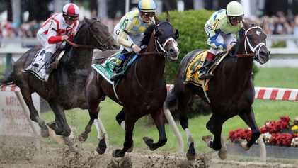 Horrende Todeszahlen bei Pferderennen in den USA