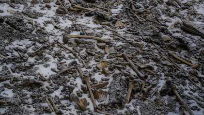 """Galerie: DNA-Studie vertieft Mysterium des """"Knochensees"""" im Himalaya"""