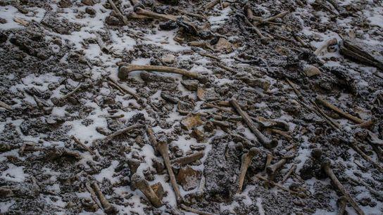 An den Ufern des Sees Roopkund liegen zahlreiche menschliche Knochen.