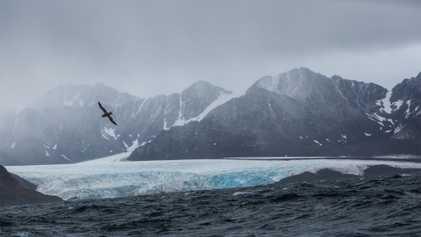 Galerie: Für die Klimaforschung blickt diese Expedition arktischen Gefahren ins Auge