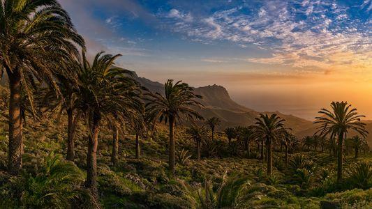 Galerie: La Gomera: Paradies für Naturgenießer