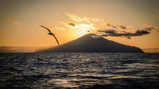 Der Atlantik erhält eines der weltgrößten Meeresschutzgebiete