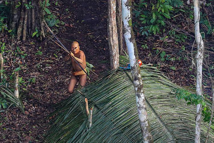 Foto eines Stammesangehörigen im brasilianischen Amazonas, der mit einem Pfeil zielt.