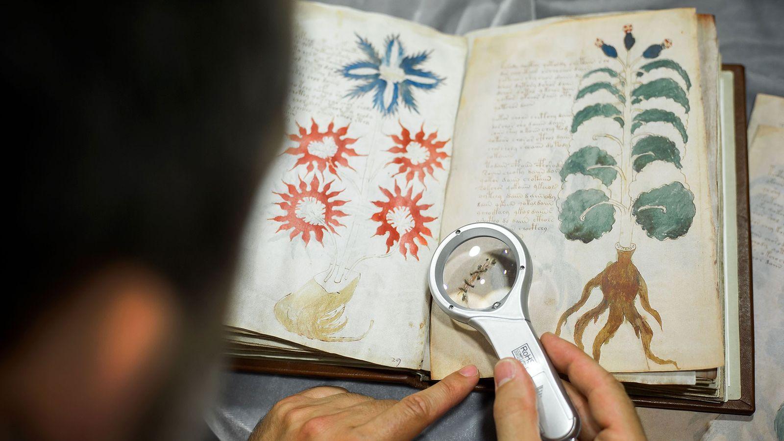 Das Voynich-Manuskript ist ein unscheinbares kleines Buch in einer Bibliothek der Universität Yale – aber es ...
