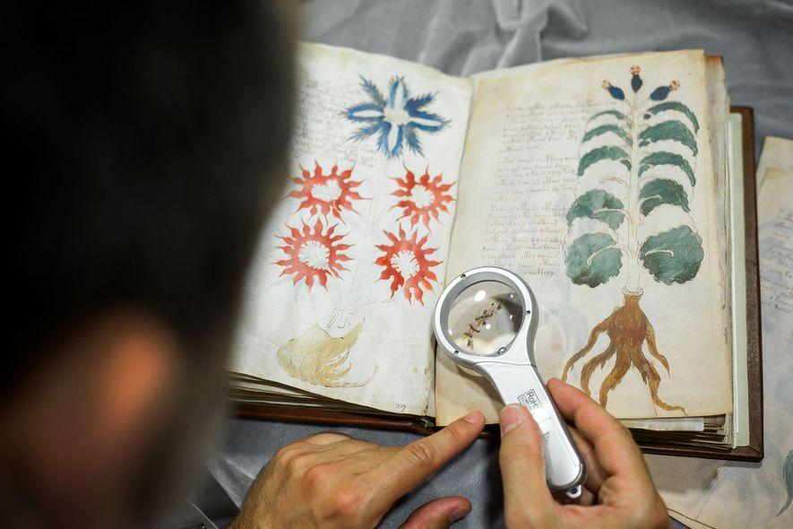 Hat ein Algorithmus das Voynich-Manuskript entschlüsselt?