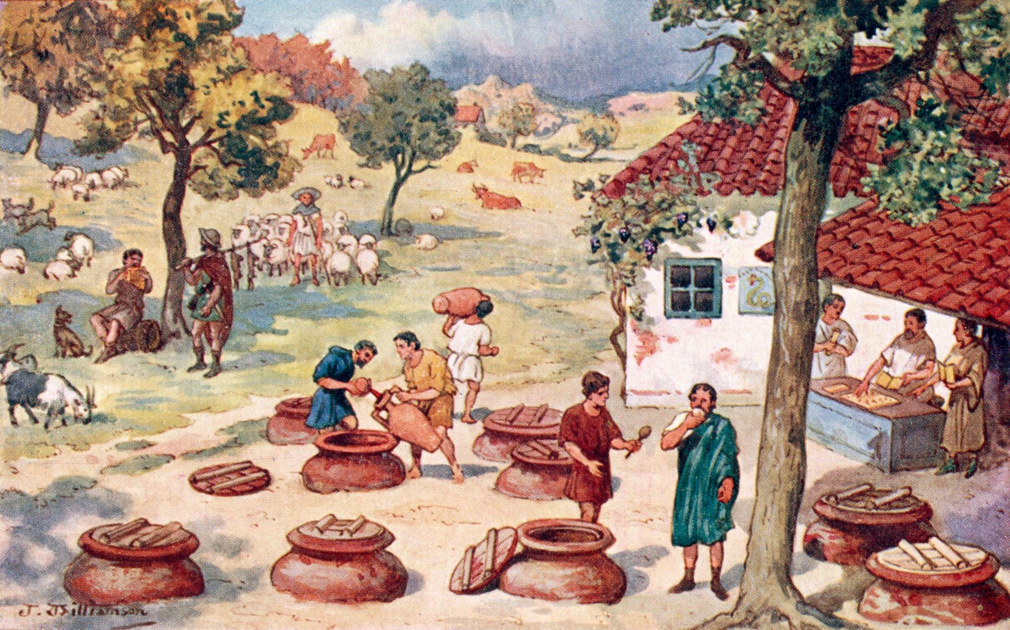 So beeinflusst der Klimawandel Spitzenweine seit dem Mittelalter | National Geographic