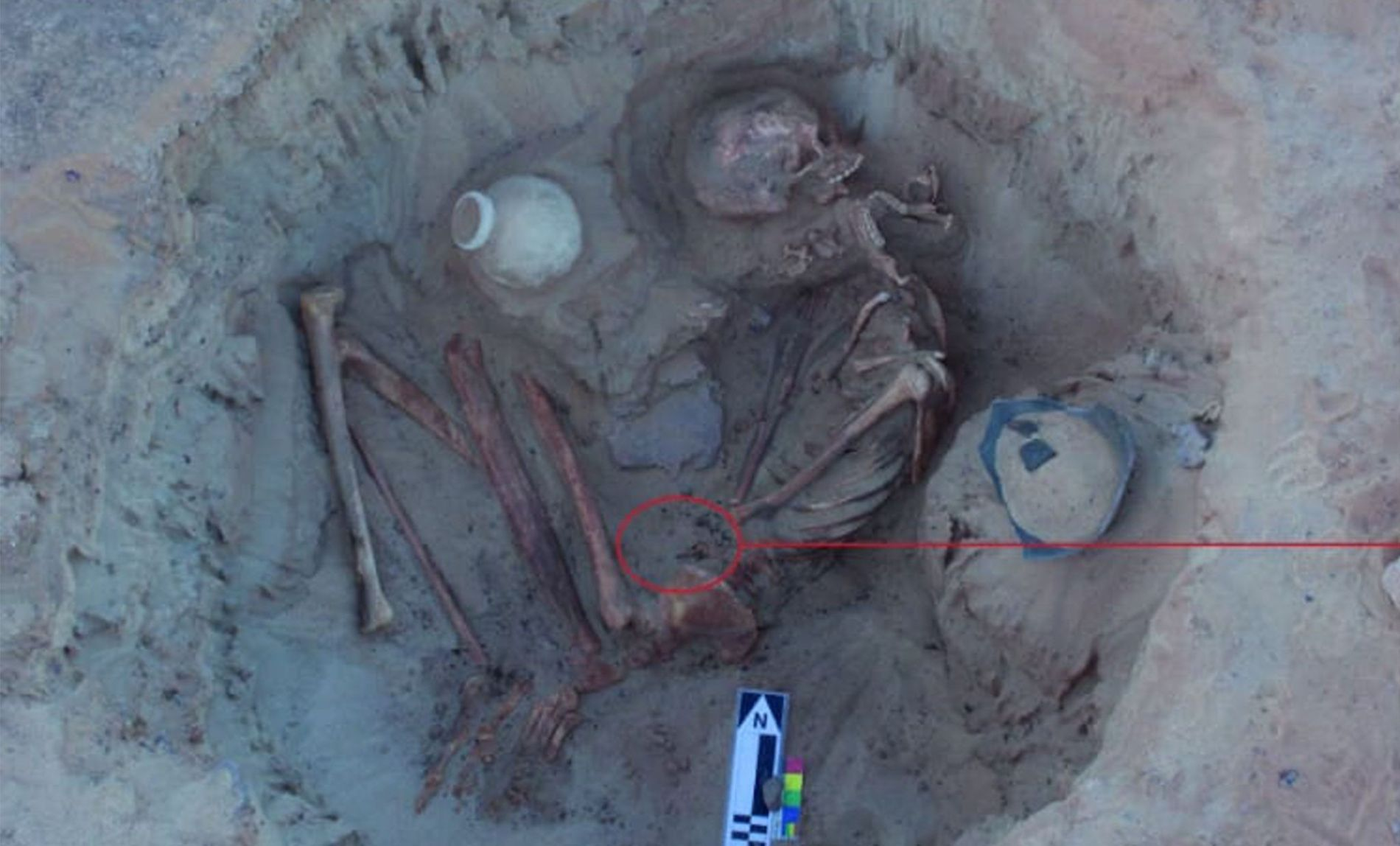 Die Skelette einer Ägypterin und ihres ungeborenen Kindes wurden nahe Assuan von einem italienisch-amerikanischen Team ausgegraben.