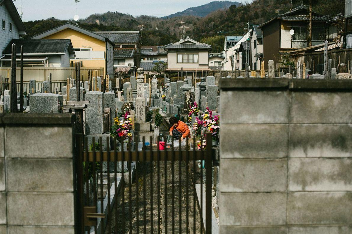 Eine Frau widmet sich den Gräbern ihrer Vorfahren auf einem städtischen Friedhof.Ohaka mairi (der Grabbesuch) ist ...