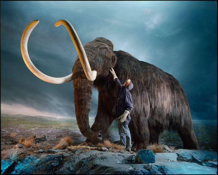 Mammut und Museumsangestellter