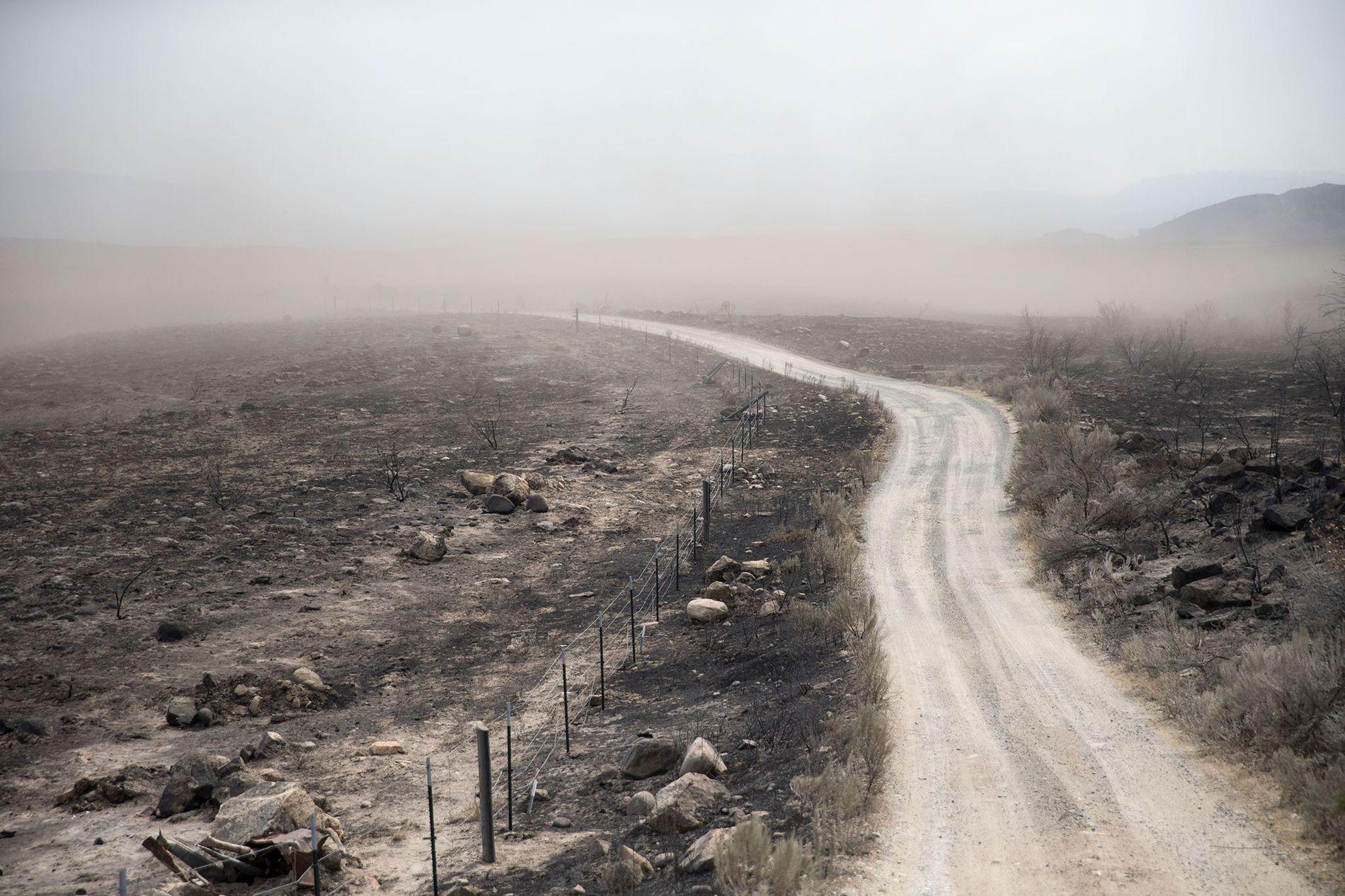 Die Dürre, die vor Kurzem die Pazifikküste des US-Bundesstaats Washington heimsuchte, wurde mit der steigenden Meerestemperatur in Verbindung gebracht.