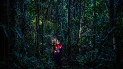 "Erste Expeditionen in Kolumbiens ""Biodiversitätswunder"""