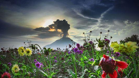 Galerie | Feuerberge in Aktion: Wenn die Vulkane der Welt erwachen