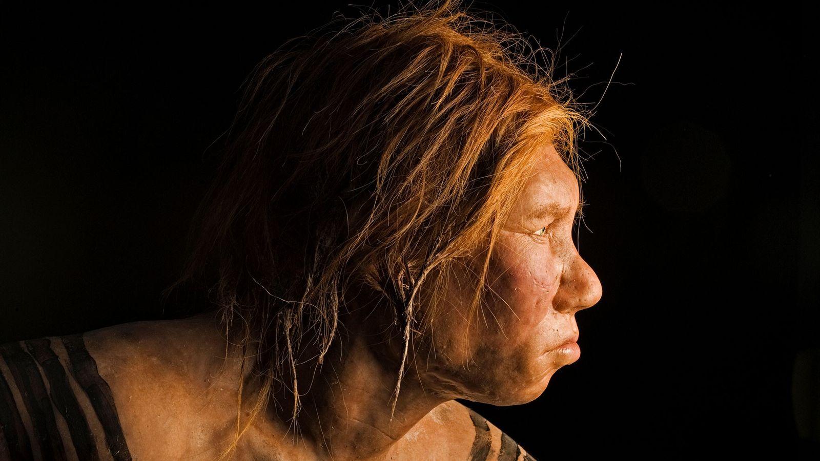Diese Rekonstruktion einer Neandertalerin aus dem Jahr 2008 ist die erste, die anhand alter DNA-Proben erstellt ...