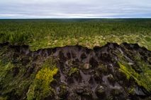 In Duvanny Yar in Nordsibirien ist der Permafrostboden abgesackt. Neue Messdaten lassen vermuten, dass die obere ...